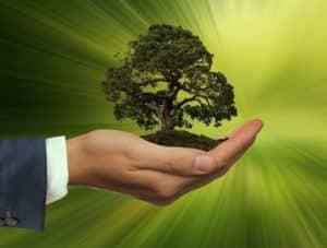 Démarquez-vous de vos concurrents avec un marketing vert sans greenwashing